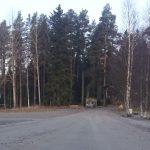 Syksy on saapunut ja lehdet puista putoilleet.